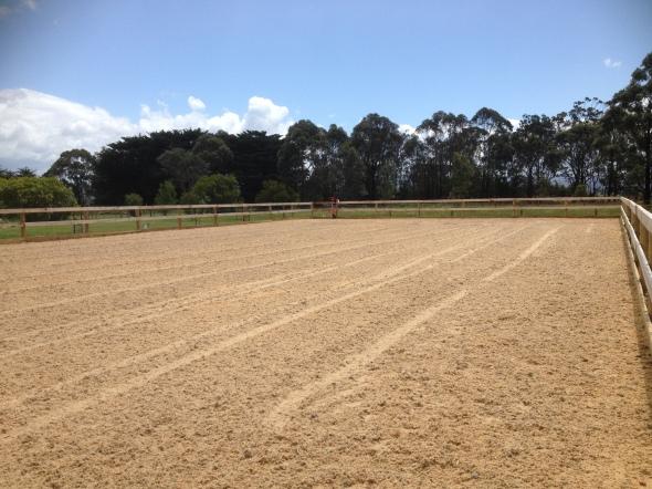 Horse Arena Construction  Fibre Suface